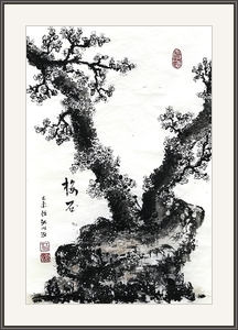 江川泓  梅花盛開根植石
