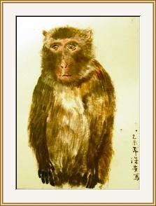 猴王無伴顯孤獨
