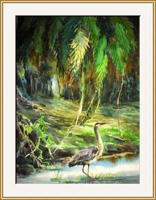 灰鶴(加州紅樹公園)