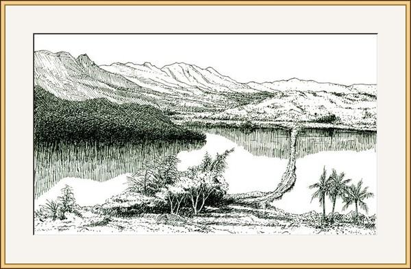 萬利空尼漁塘 #8